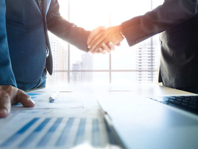 Business partners shaking hands after confirming partnership