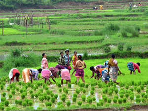 30 per cent of funds in agriculture schemes being earmarked for