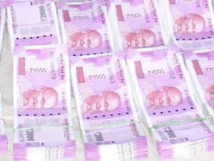 Adrija Chatterjee: Advice by Market Experts, Trading
