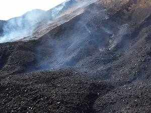 CIL Chairman Gopal Singh said the share of coal in India's commercial primary energy supply was 55 per cent in 2015-16 and is expected to remain high at 48-54 per cent in 2040.