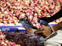 Sources said the premises of eight or nine traders from Nashik district, who account for 30-40 per cent of the onion trade in the district, were checked by I-T officials.
