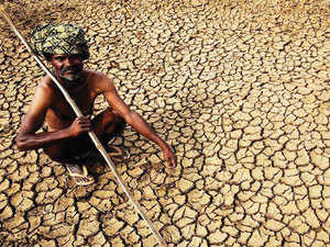 The contempt petition filed by Swaraj Abhiyan alleges that the Centre has not taken enough measures to address the drought.
