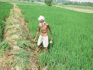 The demand includes extending the loan waiver to farmers owning land of up to 10 acres.  [Representative image]