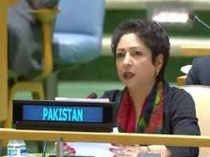 International community must call on India to halt aggressive acts: Pak