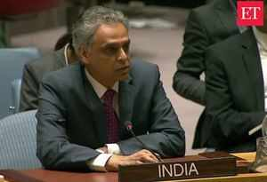 India seeks zero tolerance against terrorist safe havens: Syed Akbaruddin