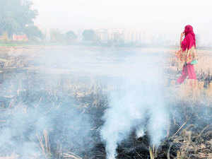 The central, state govts have tried several steps - from warning farmers to registering cases against them to creating awareness on stubble-burning - but to no avail.