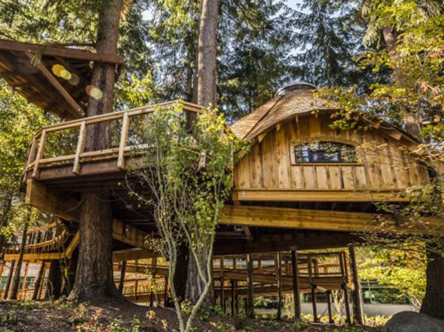 Microsoft Creates Treehouse Offices To Help Employees Stay