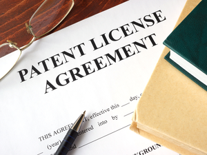The patents are valid till 2033, the company said in a BSE filing.