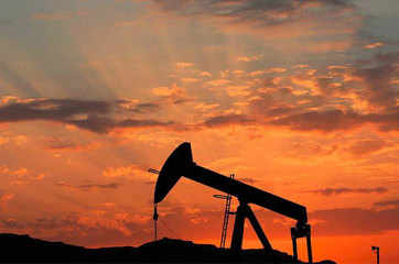 ONGC plans to raise oil output by 4 MT by 2020
