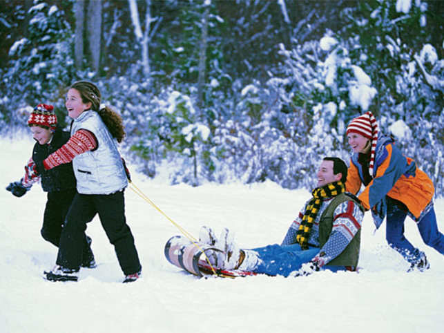 Tobogganing is a great way to enjoy the slopes with family in tow