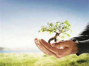 In 1970s, K Amaranarayana initiated a tree plantation drive in Indiranagar II Stage. (Representative Image)