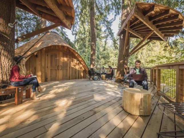 Recently, Microsoft built a few treehouses for its employees around its Redmond Campus. Here are some other leading companies that have customised unusual incentives for their workforce.