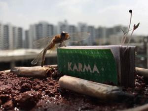 KarmaPicture1-(1)