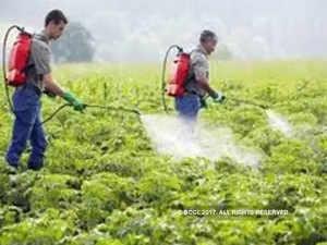 Green panel nod to Jubilant Life's Rs 250-cr pesticide