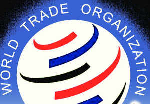 WTO bodies are charged with the responsibility of carrying out the work programme adopted in 1998.