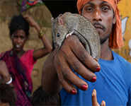Musahars of Bihar fight poverty by eating rats