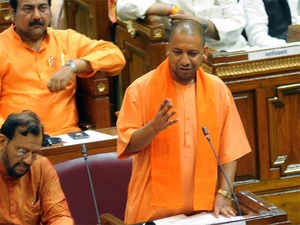 Up-assembly-Yogi-bccl