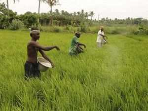 farmers-