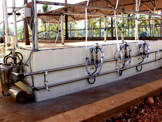 Stellapps uses animal wearables, cloud computing and data analytic to improve efficiency in the dairy sector.  (Image: stellapps.com)