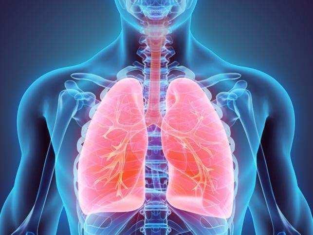 ผลการค้นหารูปภาพสำหรับ Lung