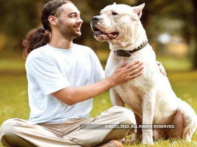 Human-dog relationship