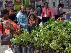 Vegetable Farming: Have no space to grow vegetables? Try