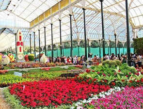 The Lalbagh Flower Show which began in 1900s was inspired by the Chelsea Flower Show