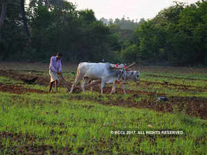 Agri-income