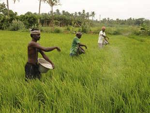 farmers-bccl