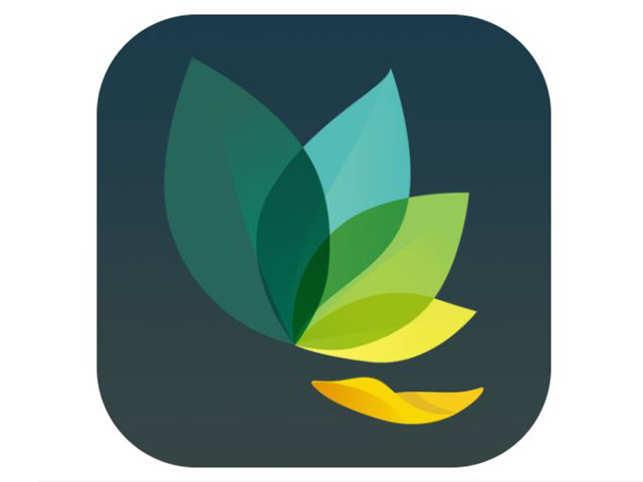 Oak — Meditation & Breathing: Having a hectic day? Try Oak