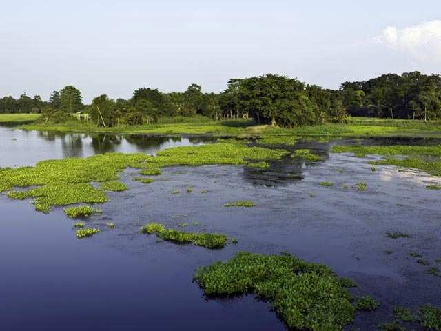 Majuli: Here's why you must visit the world's largest river island