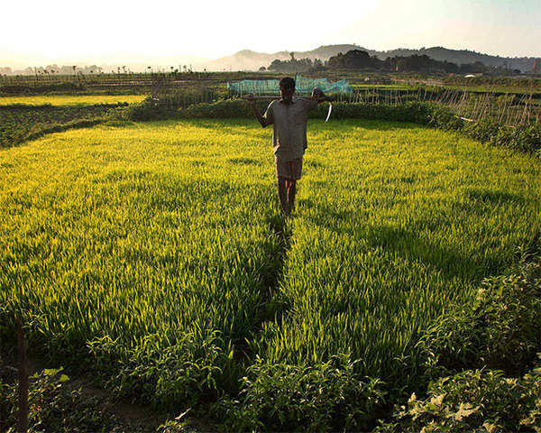 Watch: Recite Hanuman Chalisa daily to ward off calamity, MP BJP neta tells  distressed farmers