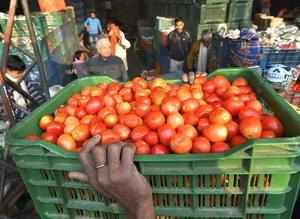 New Delhi: A porter carries a basket of tomatoes at the wholesale market at Azad...