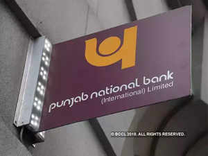 pnb frraud public sector banks may be more cautious towards diamond