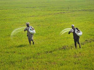 green agriculture in india