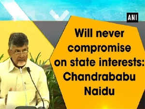 Will never compromise on state interests: Chandrababu Naidu