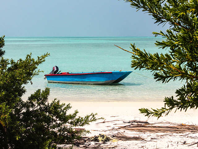 From Dolchi Holi in Rajasthan to Marine Camp in Lakshadweep, you'll want to bookmark these events