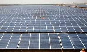 FILE PHOTO: Workers install photovoltaic solar panels at the Gujarat solar park under construction in Charanka village