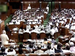 Bill to ban unregulated deposit schemes moved in Lok Sabha