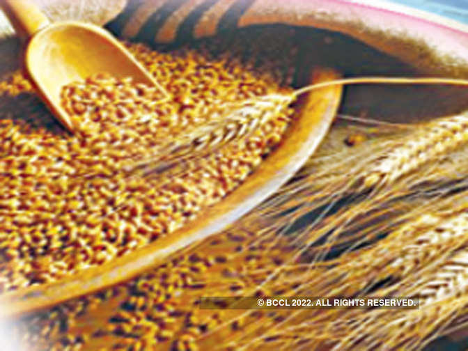 Wheat output may witness marginal squeeze due to weather in North