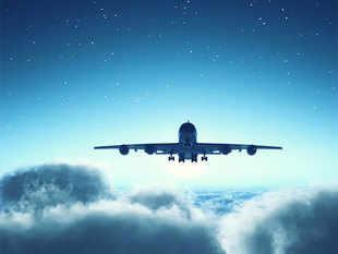 flight-thinkstcok1