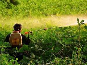 Farm activist urges Centre to ban toxic pesticides