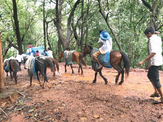 Enjoy a horse ride amidst tall trees in Matheran, view the sunset in Munnar on your weekend getaway