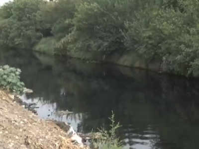 Watch: Buddha Nullah's water turns black causing threat to health