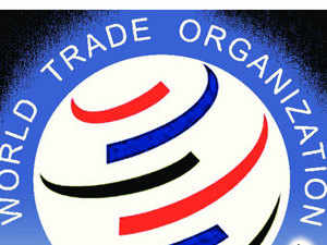 India pitches for WTO talks on checking theft of traditional knowledge