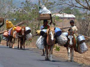 Rural-Road-