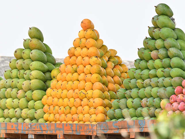 the mango war the aam party still can t bridge the regional
