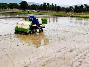 Rain-agriculture-bccl