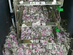 assam mice chews notes worth rs 12 lakh in atm