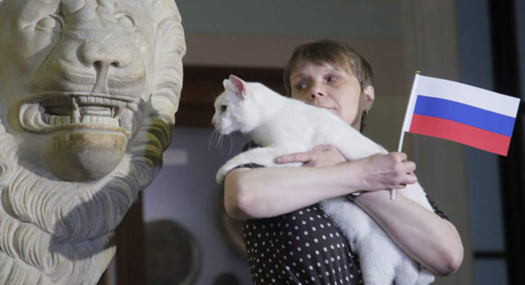 Russia hopes clairvoyant cat has purrrfect form